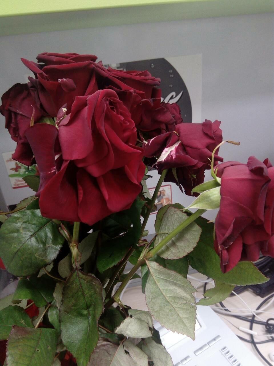 Букет для цветов из гофрированной бумаги