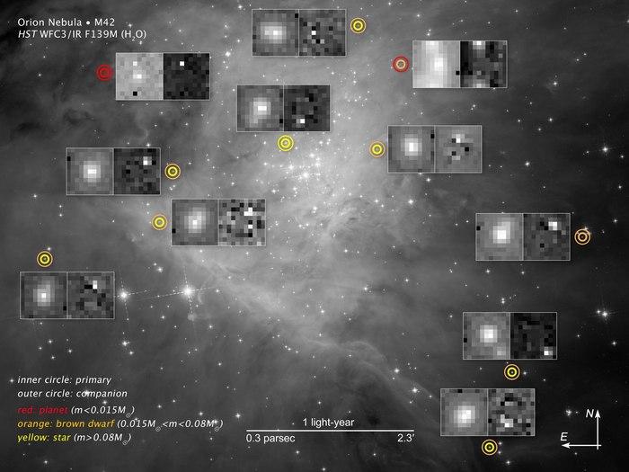 Рой коричневых карликов в звездной колыбели Космос, Туманность ориона, Карлики