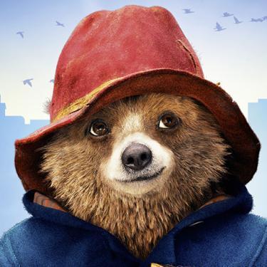 Жалоба Медведеву про кино о медведе, пост от Медведя Паддингтон, Фильмы, Медведь, Задержка выхода