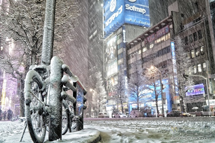 Снегопад в Токио Токио, Япония, Снег, Снегопад, Фотография, Длиннопост