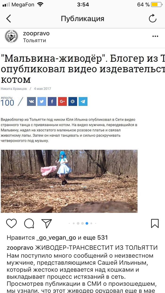 Яндекс снят проститутку черепавце