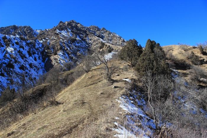Январь, а снега до сих пор  нет Горы, Нет снега, Таджикистан, Длиннопост