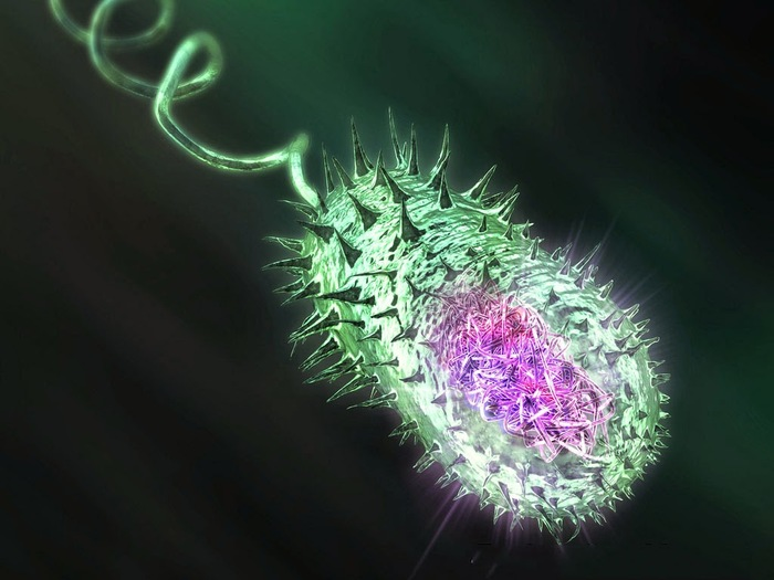 10 самых опасных бактерий наука, бактерии, Медицина, Болезнь, длиннопост