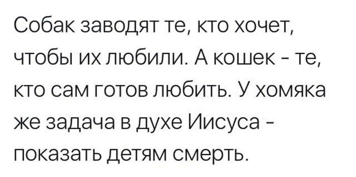 Хомяки Хомяк, Новая жизнь, Дети