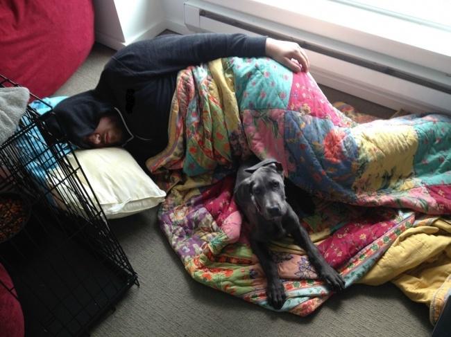 Сказала парню, что щенку нельзя спать в нашей кровати. И вот результат