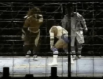 Японский рестлинг в 90-е