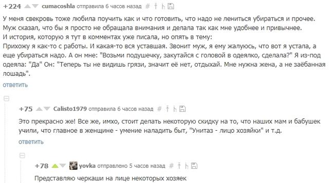 Лицо хозяйки Скриншот, Скрины коментариев, Комментарии, Комментарии на пикабу, Мне насрать на мое лицо