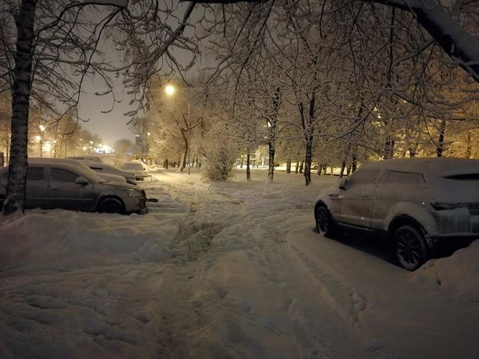 Как же красиво Зима, Снег, Красота, Деревья в снегу, Дерево, Фотография, Длиннопост