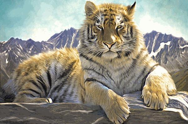 Тигр и Синемаграф