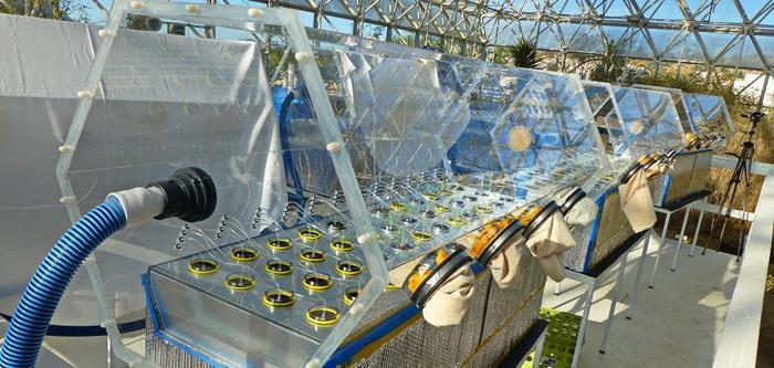 Biosphere 2/Биосфера 2 сегодня Biosphere, Биосфера, Эксперимент, Биология, Экология, Аризона, Видео, Длиннопост
