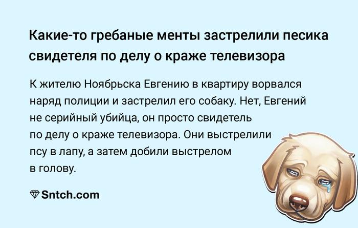 Что вы знаете о ментовском беспределе Ноябрьск, Собака, Полиция
