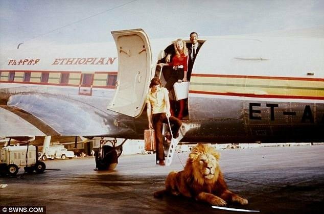 Реклама. Эфиопские Авиалинии, 1972г.