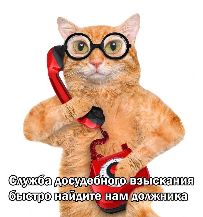 Что делать если звонят из банка по чужим долгам Звонки из банков, Чужие долги, Номер, Долг, Центробанк РФ, Длиннопост