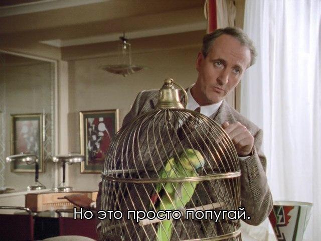https://cs10.pikabu.ru/post_img/2018/02/17/8/1518873060124142018.jpg