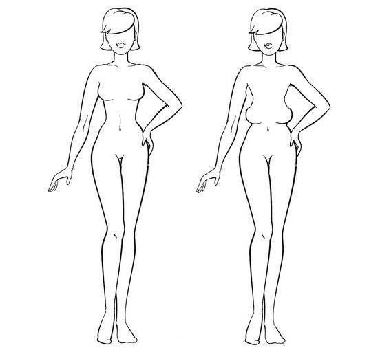 Расположение груди или сколько сосков у человека? Сиськи, Анатомия, Эволюция
