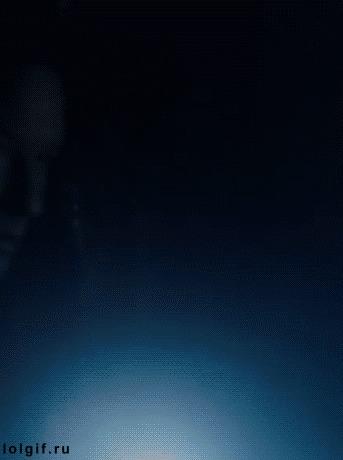 Скалли, we have a situation here... Секретные материалы, Гифка, Дана Скалли, Сипуха, Юмор, Сова, Птицы