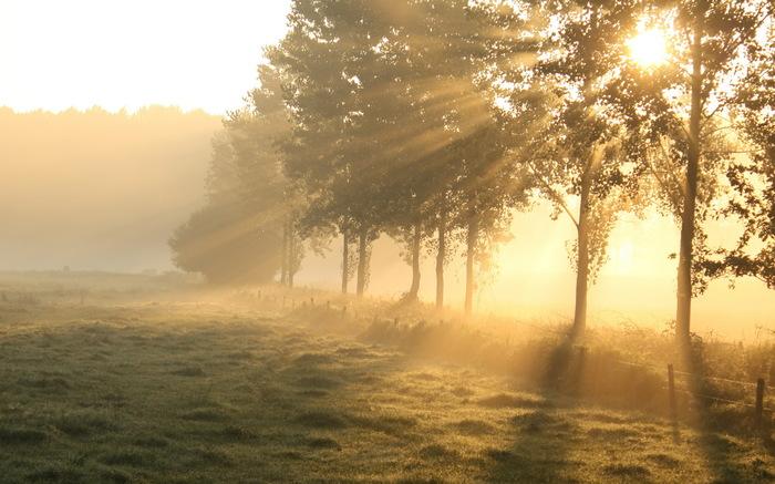 Утро нового мира Длиннопост, Утро, Военные