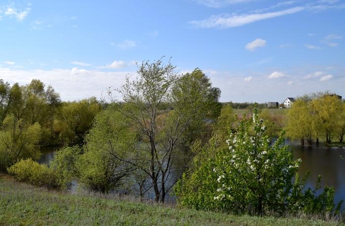 Немного весны в ленту Nikon d3300, Пейзаж, Весна, Длиннопост, Природа, Фотография