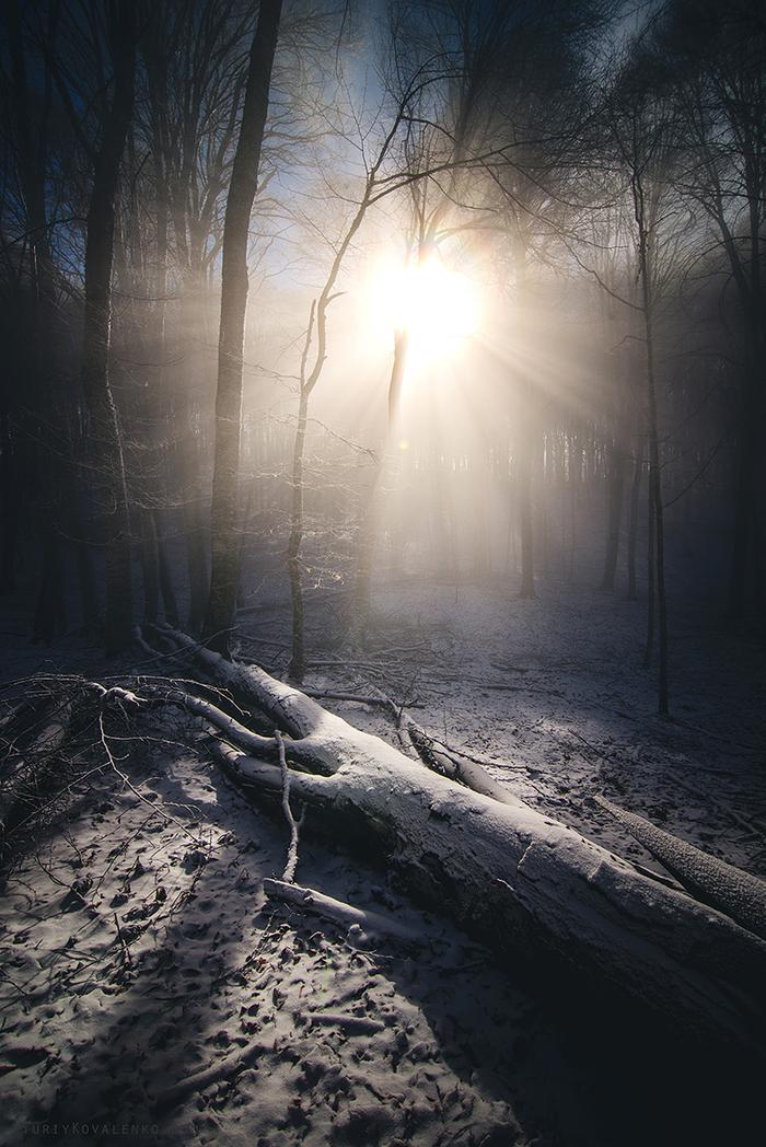Начало светлого пути Россия, Природа, Зима, Февраль, Утро