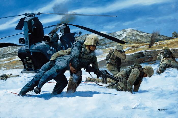 Операция «Анаконда». США, Афганистан, Операция, Анаконда, Длиннопост