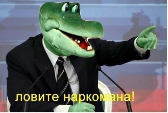 Крокодилы Поддержка, Крокодил, Игры, Наркомания