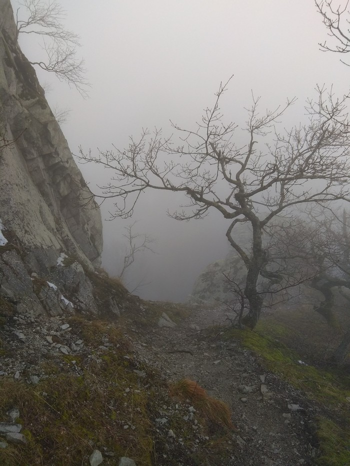 Туманный Бештау Горы, Туман, Длиннопост
