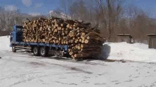 Выгрузка дров