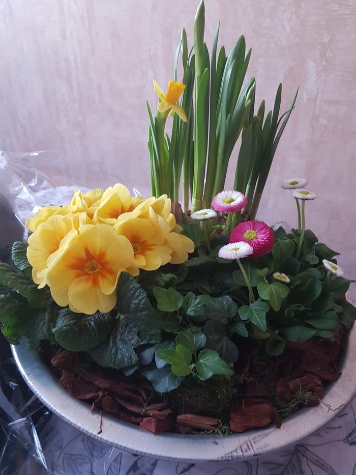 Что это за цветы? Цветы, Цветочная композиция, Подарок, 8 марта, Что это?, Длиннопост