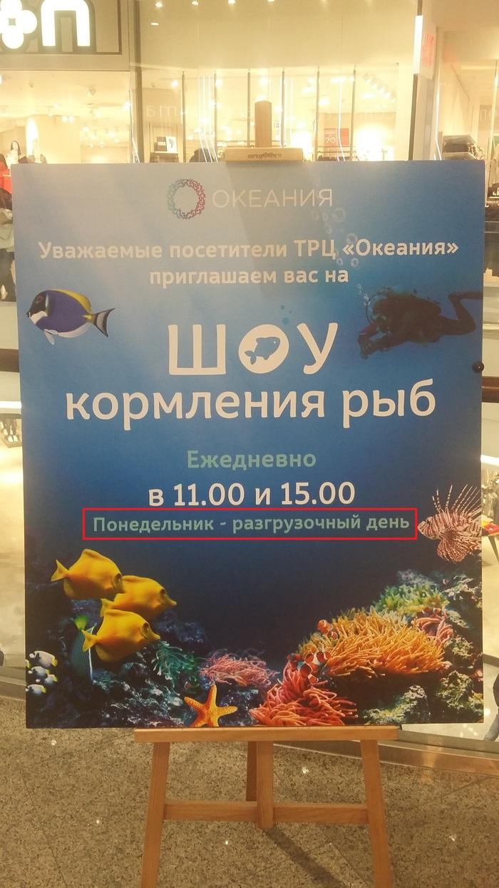 Даже рыбы готовятся к лету Разгрузочные дни, Диета, Рыба, Кормление, Объявление, Фотография