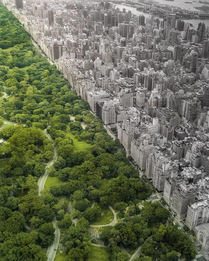 Central Park, New York Фотография, Нью-Йорк, Central park, Квадрокоптер, Контраст