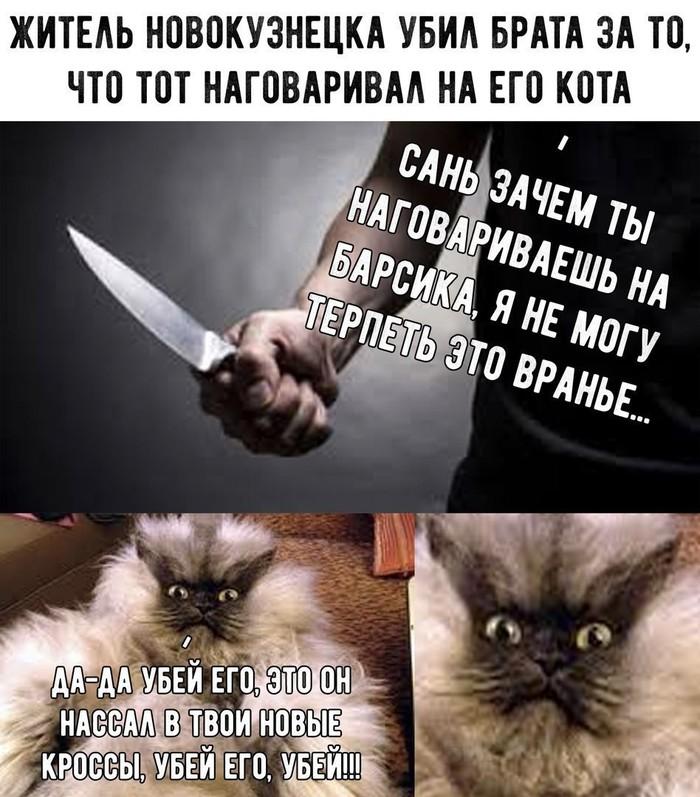 Когда хозяин дебил Кот, Питомец, Убийство, Тюрьма