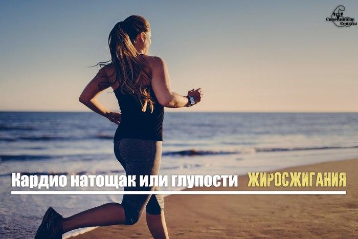 Кардио натощак или глупости жиросжигания Спорт, Тренер, Спортивные советы, Кардио, Похудение, Диета, Мышцы, Программа тренировок, Длиннопост