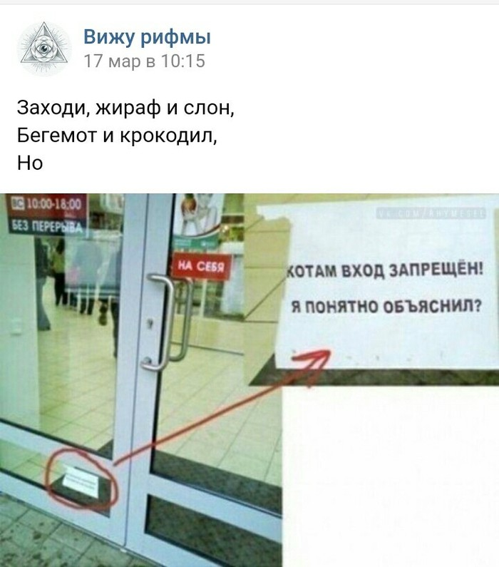 Вижу рифму Вижу рифму, Кот, ВКонтакте, Скриншот