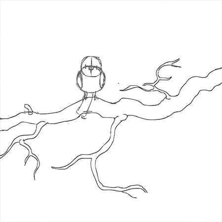 Этапы анимирования. Анимация, 2d, Синица, Гифка