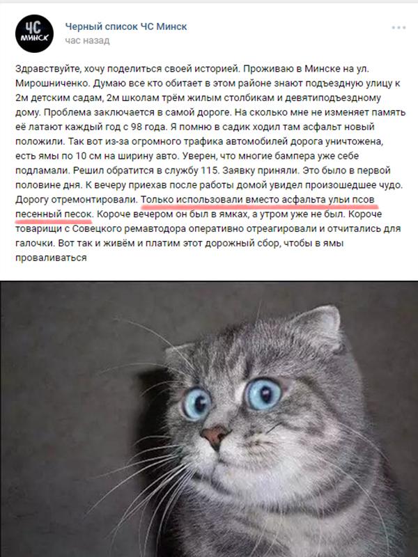 Штааа? Скриншот, Жалоба, Шизофрения, ВКонтакте
