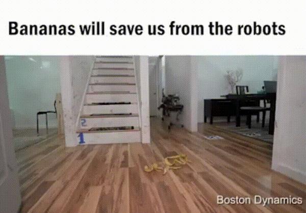 Бананы спасут нас от роботов