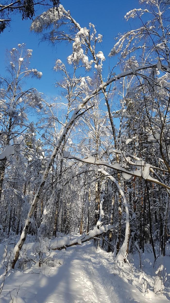 Вслед уходящей зиме. Фотография, Зима, Снег, Длиннопост
