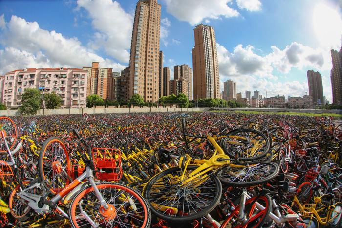Велосипедные кладбища в Китае: фотосвидетельства эпического бизнес-провала Китай, велосипед, кладбище, длиннопост