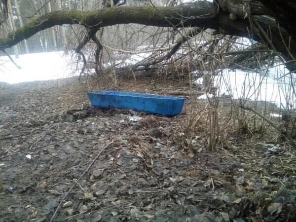 В Перми в Балатовском парке по весне нашли гроб Гроб, Подснежники, Лента новостей, Из сети