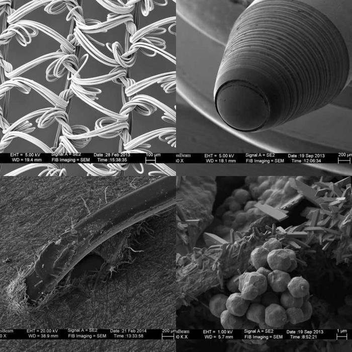Электронный микроскоп Микроскоп, Электронный микроскоп, Увеличение, Нейлон, Шариковая ручка, Скрепка, Бумага, Кофе