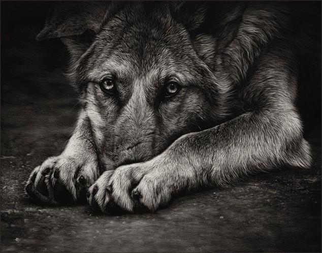 Я расскажу вам как умирают собаки... Стихи, Собака, Не мое, Из сети