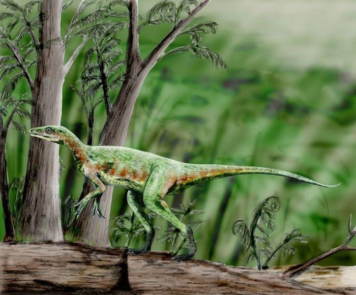 Динозавры в цифрах и масштабе Палеонтология, Динозавры, Животные, Цифры, Длиннопост