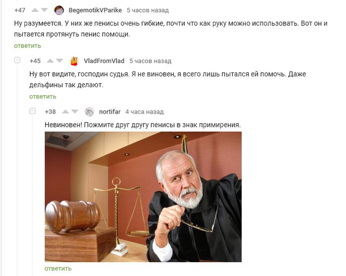 Пенис помощи Комментарии на пикабу, Пенис, Дельфин