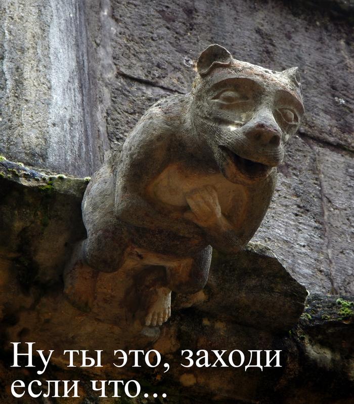 Горгулья в крепости тамплиеров
