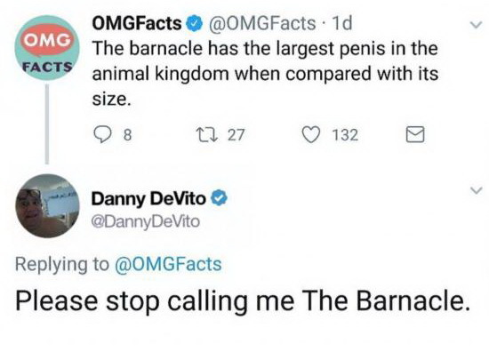 Дэнни в своем репертуаре Дэнни ДеВито, Пенис, Животные, Размер имеет значение, Скриншот, Facebook