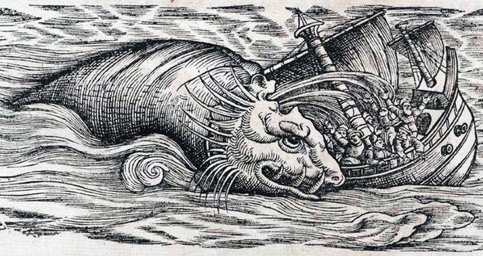 Чудовище, в которое не верили 1000 лет Кальмар, Море, Чудовище, Длиннопост