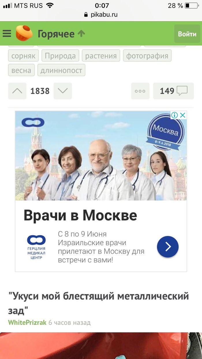 Реклама на пикабу)