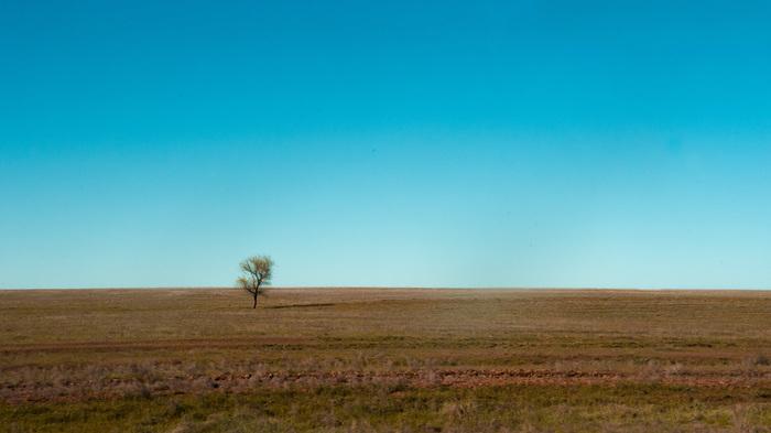 Минимализм фотография, минимализм, Природа, степь