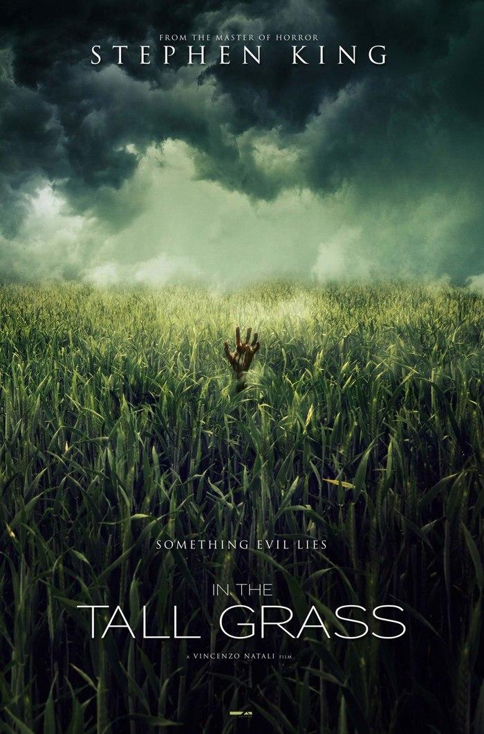 Netflix взялись за адаптацию повести Стивена Кинга и Джо Хилла «В высокой траве». Стивен кинг, Экранизация, Книги, Ужасы, Длиннопост