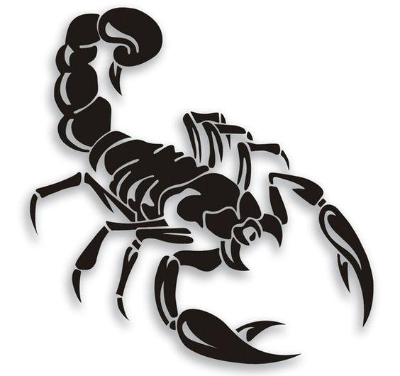 Холодная кровь скорпиона. Скорпион, Созвездия